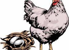 کنسرو مرغ شرای تن