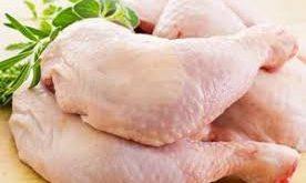 تولید کنسرو مرغ پیچک
